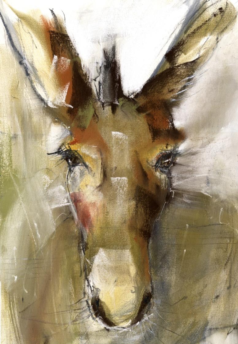 תוצאת תמונה עבור donkey studying