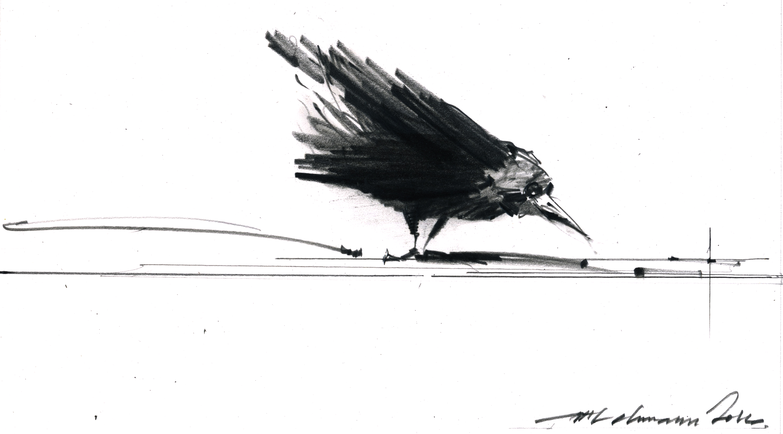 lastbirdhome_1